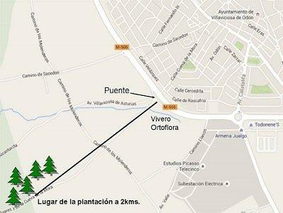 plano 2015 plantación